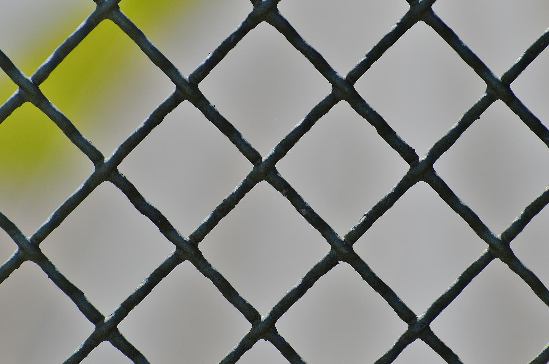 siatki ogrodzeniowe